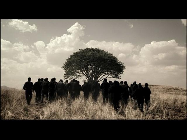 生命之树(左屏)