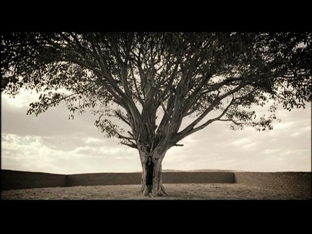 生命之树(右屏)